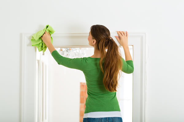 Domestic cleaning services, London